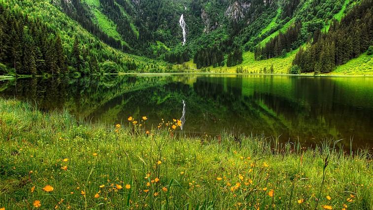Od narave se lahko veliko naučimo (foto: pixabay)
