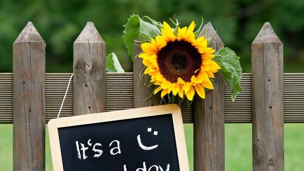 Modre misli za super ponedeljek (foto: Profimedia)