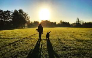 Kaj bi se zgodilo, če bi vsako jutro začeli s sprehodom?
