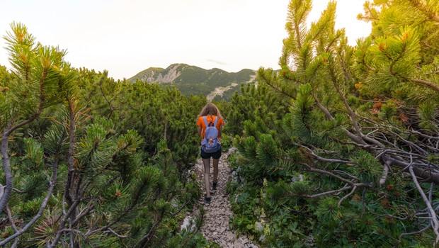 13 načinov, kako se povezati z naravo (foto: unsplash)