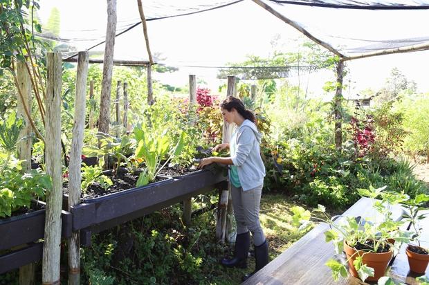 VRTNARITE Vsi, ki že imate svoj vrt, si zanj vzemite več časa, za druge pa je čas, da si ga …