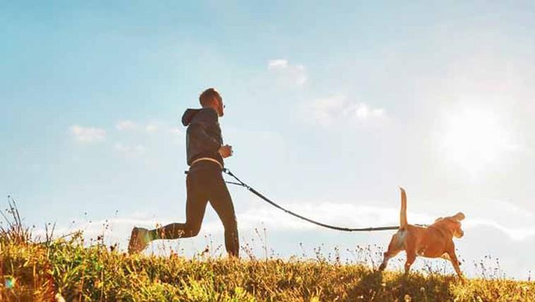 Vse, kar morate vedeti o teku v pasji družbi (foto: Shutterstock)