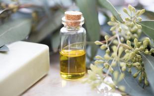 Kako uporabljati evkaliptusovo olje? (in zakaj mora vedno biti v vaši omarici)