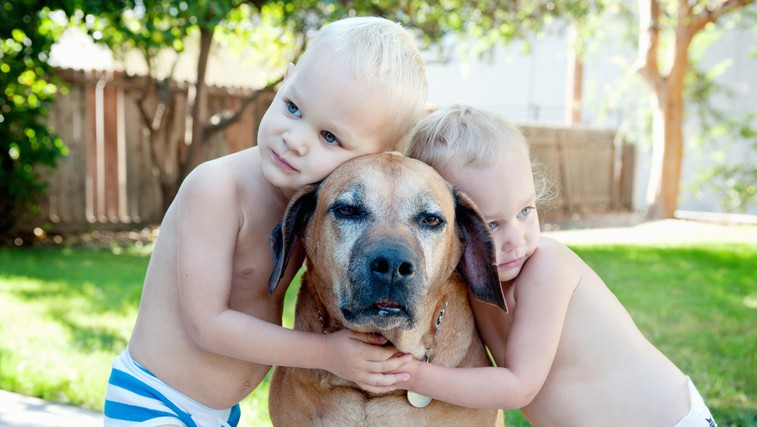 """Elli H. Radinger, avtorica knjige Modrosti starih psov: """"Od pasjih starčkov se lahko naučimo, kaj je res pomembno v življenju"""" (foto: Profimedia)"""