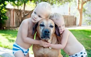 """Elli H. Radinger, avtorica knjige Modrosti starih psov: """"Od pasjih starčkov se lahko naučimo, kaj je res pomembno v življenju"""""""