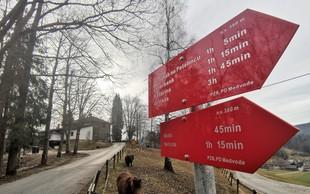 Ideja za izlet: grofovski Jeterbenk nad Medvodami - po poti roparskih vitezov