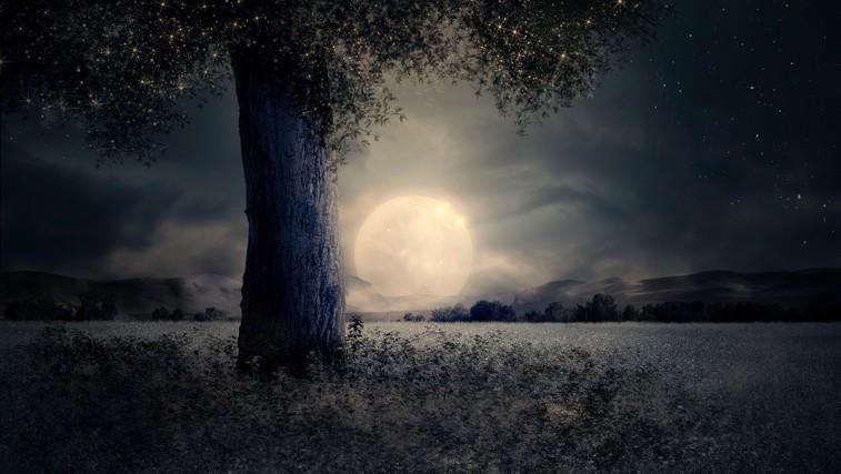 Zakaj bi se morali odpraviti na sprehod v soju polne lune (foto: pixabay)