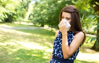 Alergija na cvetni prah je lahko povezana s potlačenimi čustvi