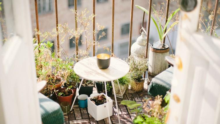 Projekt balkon: zakaj ne more izgledati kot z Instagrama (in kaj si želim, da bi vedela že prej) (foto: unsplash)