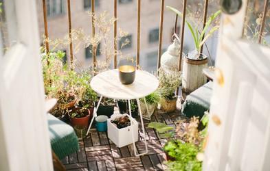 Projekt balkon: zakaj ne more izgledati kot z Instagrama (in kaj si želim, da bi vedela že prej)