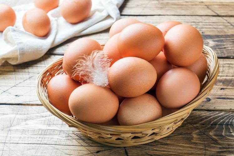 Sprehodite se po foto galeriji in preverite nekaj primerov: JAJCA Vas je presenetilo, da so se na seznamu znašla jajca? …