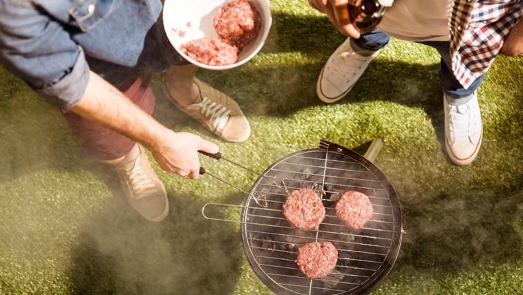 Poznate vsa ta nepisana pravila za res nepozaben piknik? (točka 4 ne sme manjkati) (foto: PROFIMEDIA)