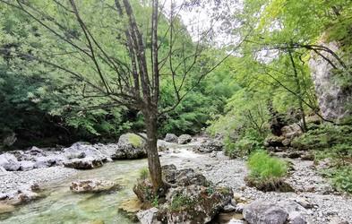Pobeg iz mesta po svežo zalogo kisika in sprehod po naravi: soteska Iški vintgar
