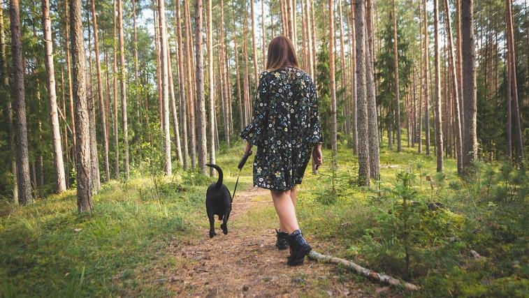 V naravo hodim, da najdem sebe (foto: pexels)