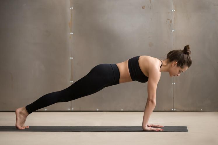 Plank Plank je odlična vaja za čvrst trebuh, hrbet in tudi za lepo držo. Plank okrepi tisto najpomembnejše - jedro …