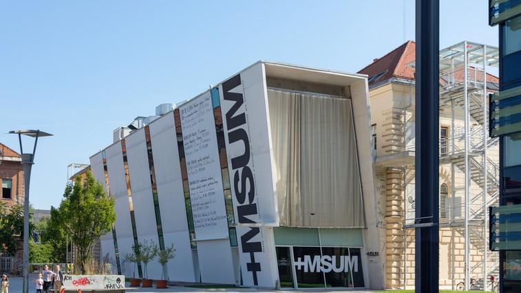 1 vstopnica za 11 muzejev in galerij: skupna poletna akcija muzejev in galerij v Ljubljani (foto: profimedia)