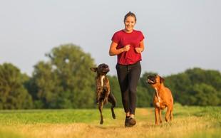 Nimate tekaškega partnerja? Naj vam predstavimo najbolj aktivne pasme psov, ki jim bo gibanje v užitek