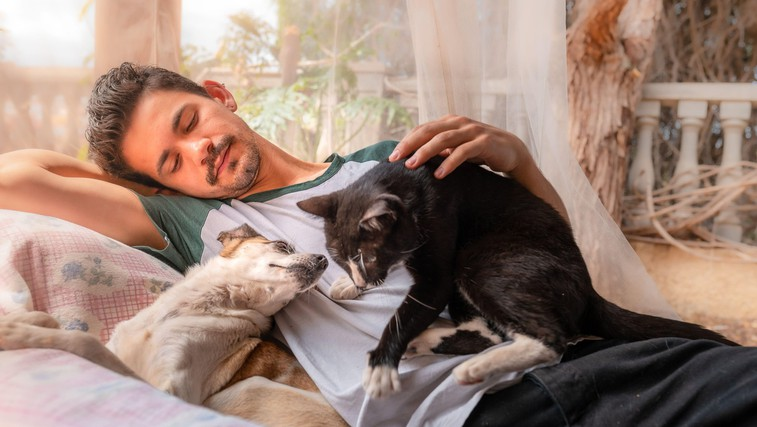 16 neprecenljivih stvari, ki nas jih lahko naučijo mačke in psi (foto: Profimedia)