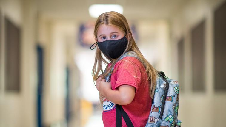 Koliko učencev in dijakov se bo septembra šolalo doma in koliko se jih bo vrnilo v šole? Vse bo znano tik pred začetkom šole, v igri so 4 modeli (foto: profimedia)
