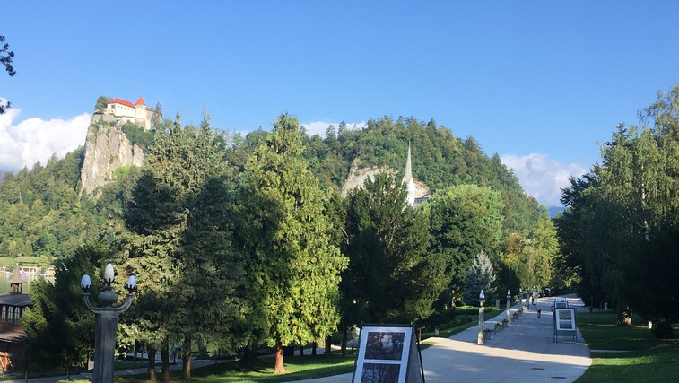 Pred skokom v jezero še na ogled razstave Podobe raja: Bled na platnih slovenskih slikarjev (foto: DDD)