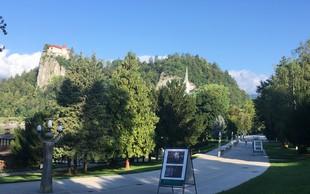 Pred skokom v jezero še na ogled razstave Podobe raja: Bled na platnih slovenskih slikarjev