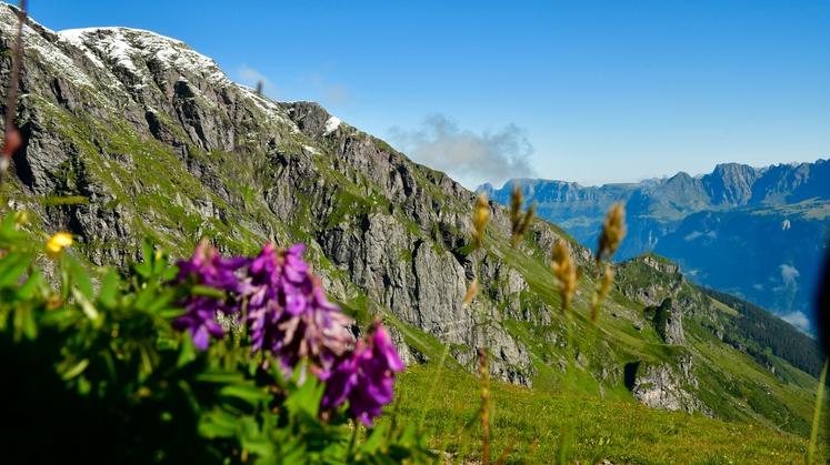 Naša bralka Klara Musar, ki trenutno živi v Švici, se je kot mnogi med letošnjimi počitnicami podala na raziskovanje domačih …
