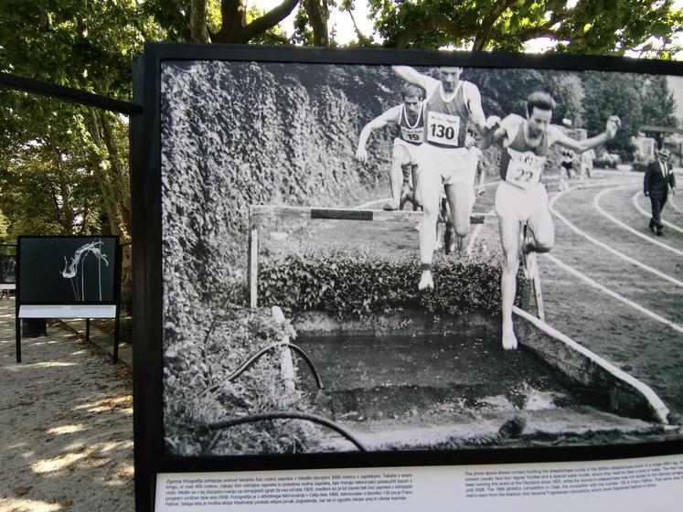 Za mejnik začetka organiziranega delovanja Atletske zveze Slovenije je obveljalo leto 1920, ko je bilo 25. in 26. septembra v …
