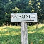 Dan v naravi: Zajamniki nad Pokljuko in Slemenova špička nad Vršičem -  izleta, za družine in srednje zagnane pohodnike (foto: DDD)