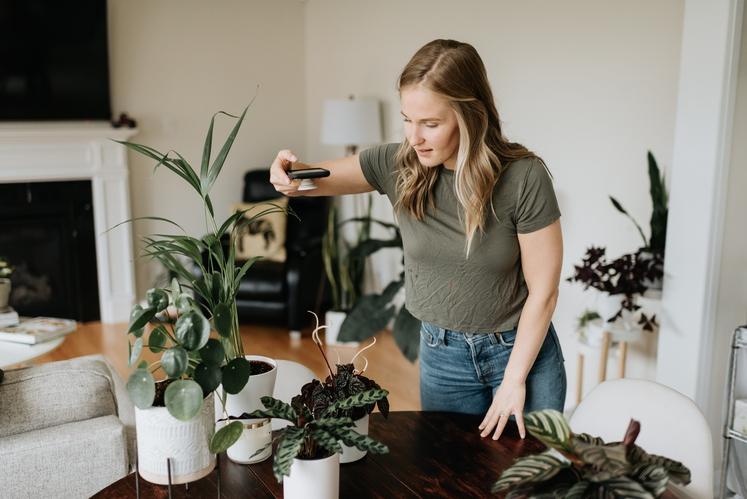 """Žal večina sobnih rastlin kisik sprošča podnevi, ponoči pa ne. A obstajajo tudi rastline, ki vam bodo kisik """"dostavljale"""" med …"""