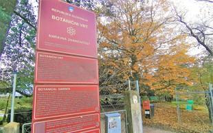 Počitniška ideja za Ljubljančane: sprehod skozi jesenski botanični vrt