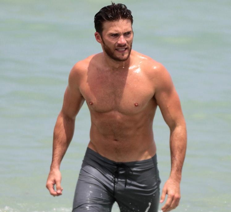 Na telesu seksi Scotta Eastwooda lahko vidimo, da trebušne mišice v grobem delimo na premo trebušno mišico, zunanjo poševno trebušno …
