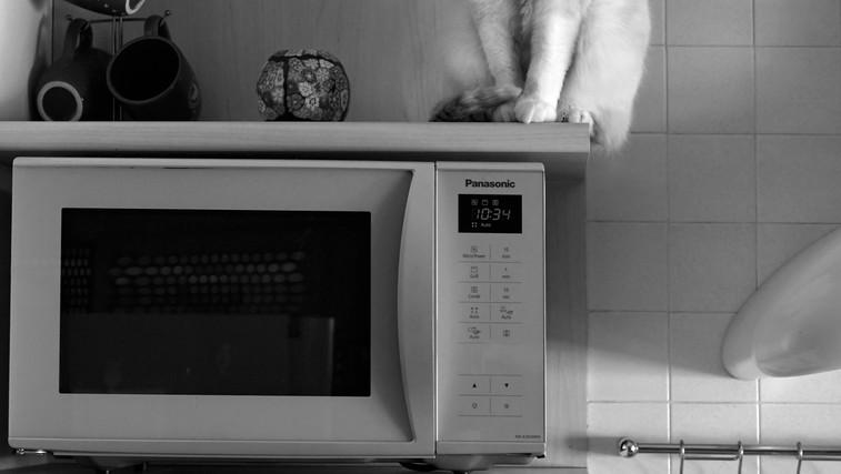 8 razlogov, da odstranite mikrovalovno pečico iz kuhinje (foto: pexels)