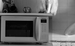 8 razlogov, da odstranite mikrovalovno pečico iz kuhinje