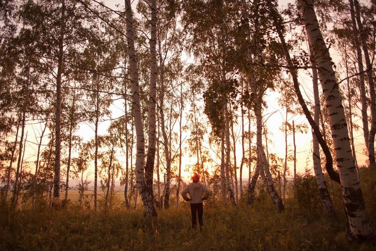 ČAS V NARAVI Niso le introverti tisti, ki se radi sprehodijo čez gozd ali odpravijo na izlet v naravo, a …