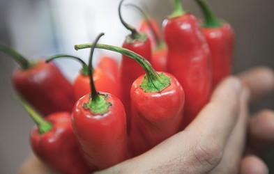 Ljudje, ki redno jedo čili, živijo dlje (raziskava)