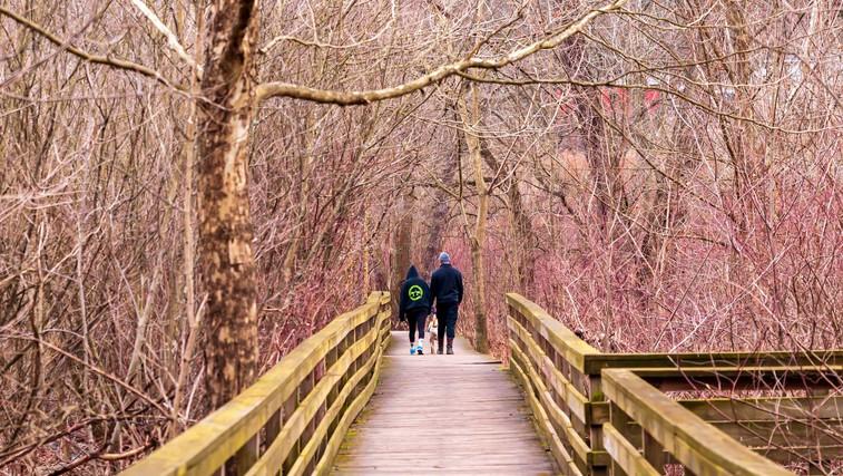 Katerih dobrih učinkov ste deležni, če vsak dan hodite 10, 20 ali 30 minut? (foto: profimedia)