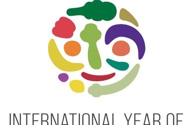 Leto 2021 bo mednarodno leto sadja in zelenjave. Preberite zanimivosti o slovenskih jabolkih in ptujskem lüku