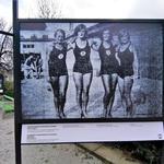 100 let – 100 medalj - sprehodite se po razstavi v Tivoliju (foto: DDD)