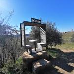 Goriška brda: idilični svet gričev, kjer jo lahko mahnete po poteh češnjevega cveta (foto: DDD)