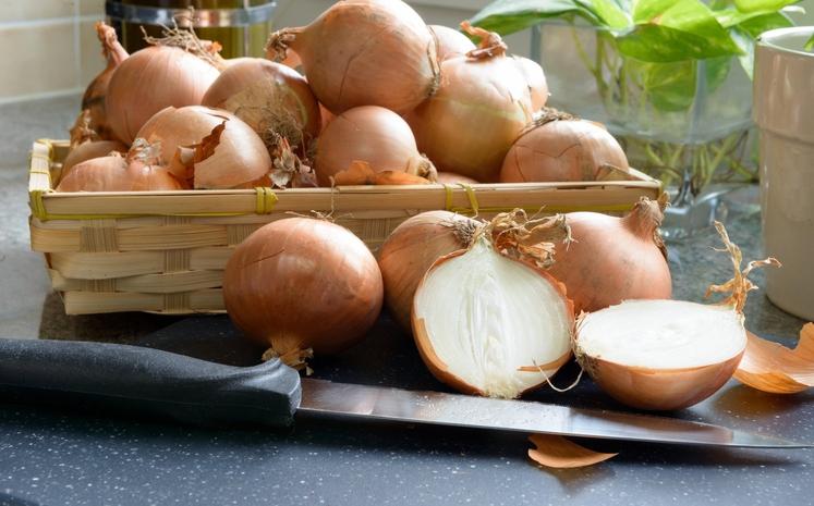 Čebula je super zdravo živilo, potrdijo številni nutricionisti. Je odličen vir vitamina C, organskih žveplovih spojin, flavonoidov in fitokemikalij, ki …