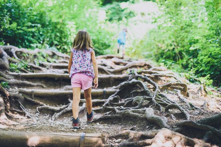 Ste se po stresnem dnevu že kdaj odpravili na sprehod v naravo? Potem veste, kako dobro učinkuje že 15 minut …