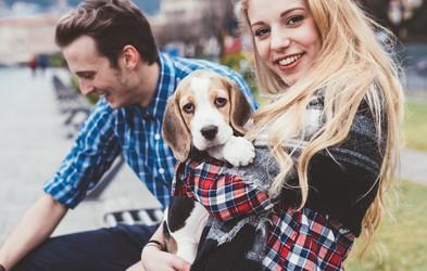 11 stvari, ki jih morate vedeti, preden stopite v zvezo z lastnikom psa