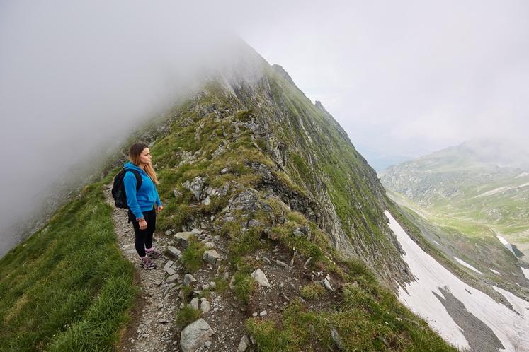 Hoja zame pomeni vstop v naravo. In zato hodim počasi, skoraj nikoli ne tečem. Narava zame ni telovadnica. Gledal bom, …