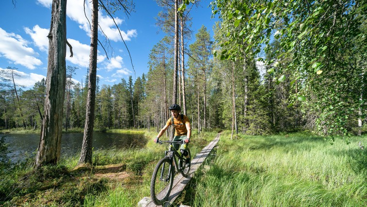 Za vse, ki obožujete adrenalin: 6 norih kolesarskih parkov po Sloveniji (tudi za začetnike!) (foto: Profimedia)