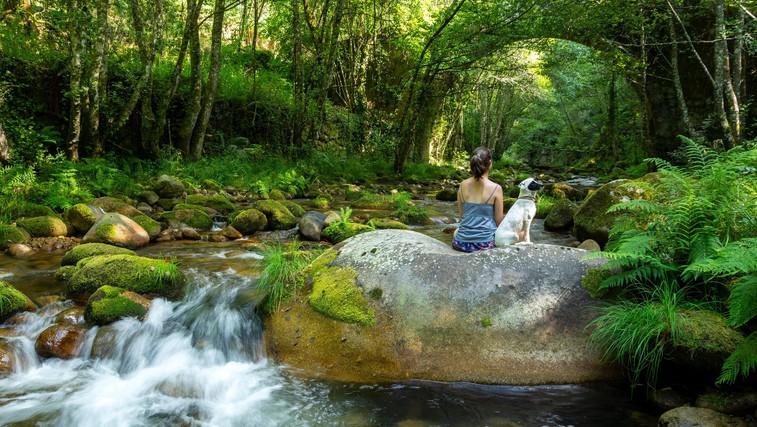 Zato bi morali več časa preživeti v naravi ... In početi TO! (VIDEO) (foto: Profimedia)