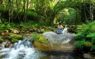 Zato bi morali več časa preživeti v naravi ... In početi TO! (VIDEO)