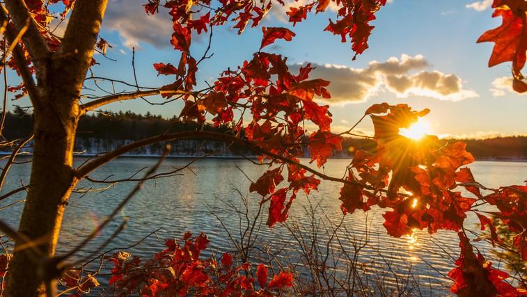 Jesenski seznam: za kaj si morate nujno vzeti čas in kako bomo popestrili jesen? (foto: Profimedia)