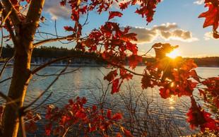 Jesenski seznam: za kaj si morate nujno vzeti čas in kako bomo popestrili jesen?