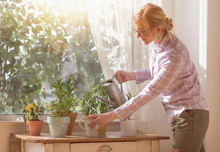 Rastline so ključne za naše preživetje. Zagotavljajo hrano, gradbeni material, gorivo, uporabljajo se v farmacevtski industriji. Rastline pa zagotavljajo tudi …