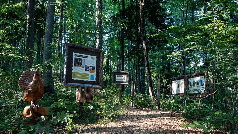 Ideja za izlet: Park Cukarca ste že obiskali? (foto: Arhiv park Cukarca)